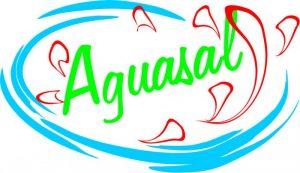 Aguasal